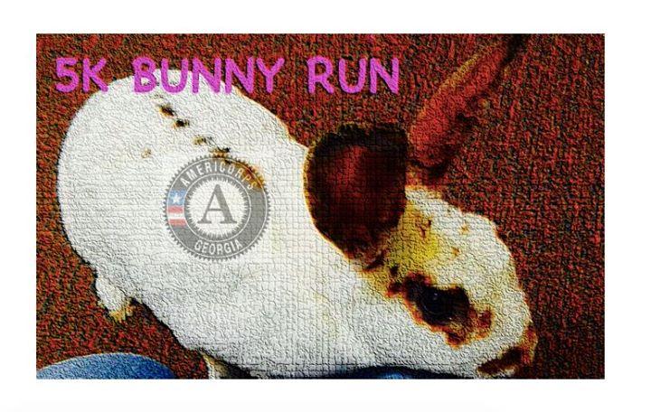 5K Bunny Run